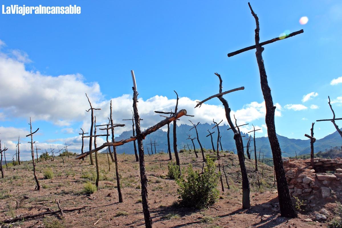 El Bosc de les creus, un monte en duelo