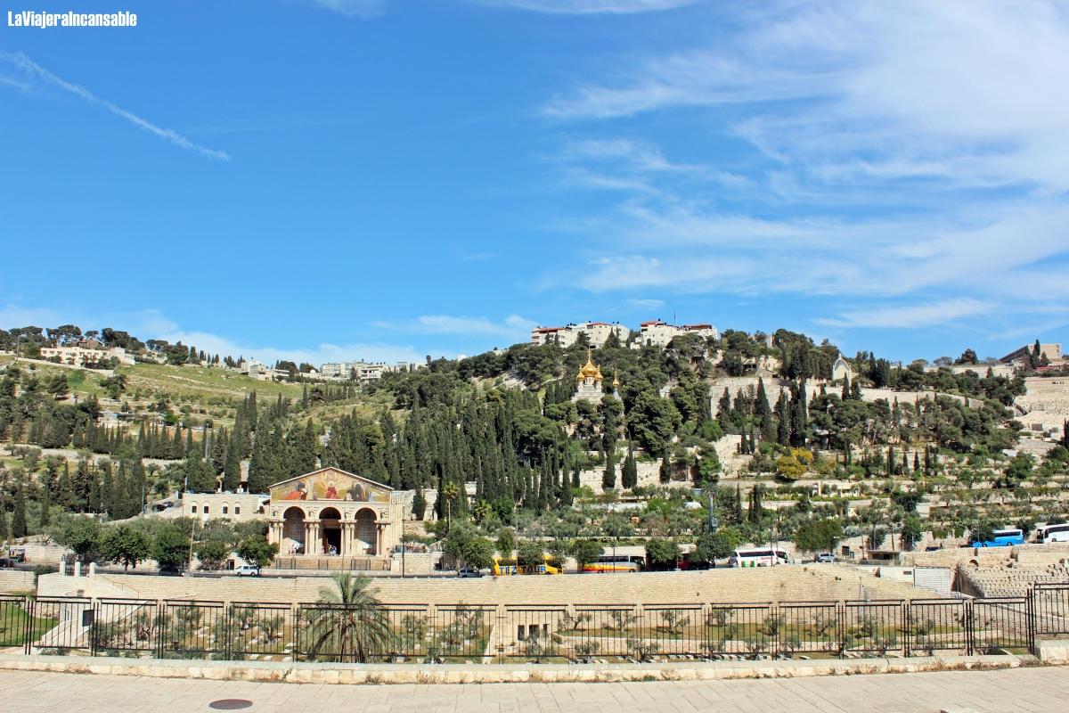Semana Santa en Jerusalén: Siguiendo las últimas horas de vida de Jesús (1ª parte) | Día 6: Llegando al final