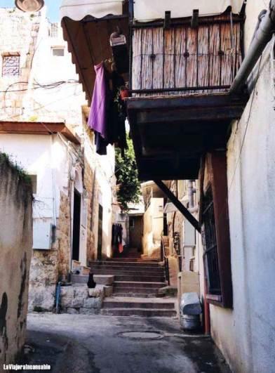 haifa-wadi-nisnas-israel-585x793